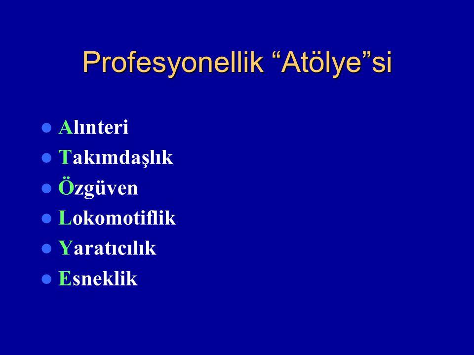 Profesyonellik Atölye si