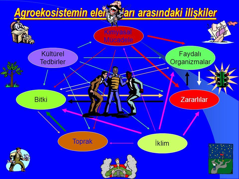 Agroekosistemin elemanları arasındaki ilişkiler