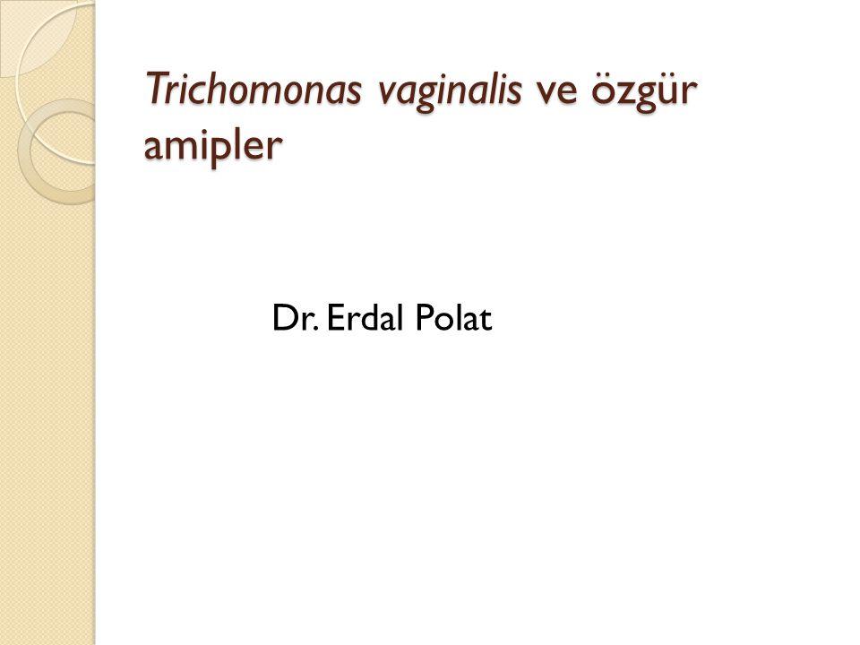 Trichomonas vaginalis ve özgür amipler