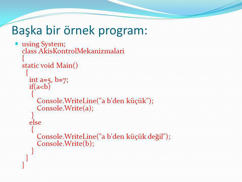 Başka bir örnek program: