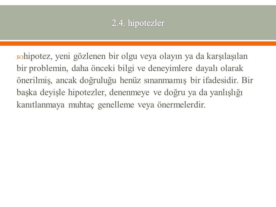 2.4. hipotezler