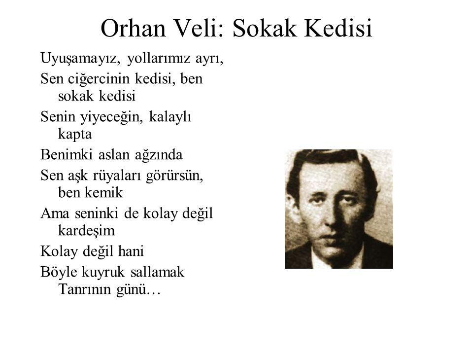 Orhan Veli: Sokak Kedisi