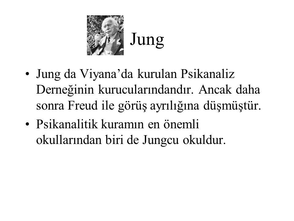 Jung Jung da Viyana'da kurulan Psikanaliz Derneğinin kurucularındandır. Ancak daha sonra Freud ile görüş ayrılığına düşmüştür.