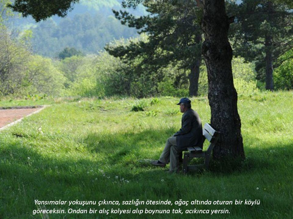 Yansımalar yokuşunu çıkınca, sazlığın ötesinde, ağaç altında oturan bir köylü göreceksin.
