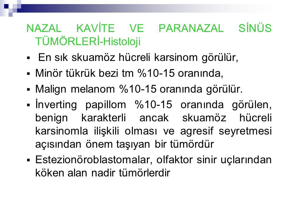 NAZAL KAVİTE VE PARANAZAL SİNÜS TÜMÖRLERİ-Histoloji