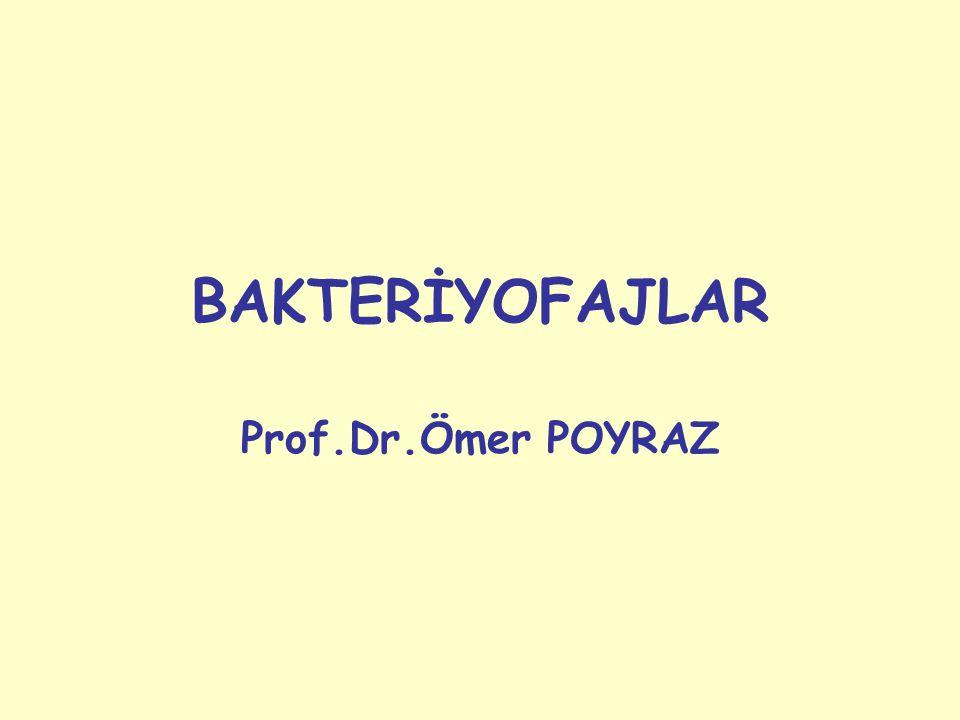 BAKTERİYOFAJLAR Prof.Dr.Ömer POYRAZ