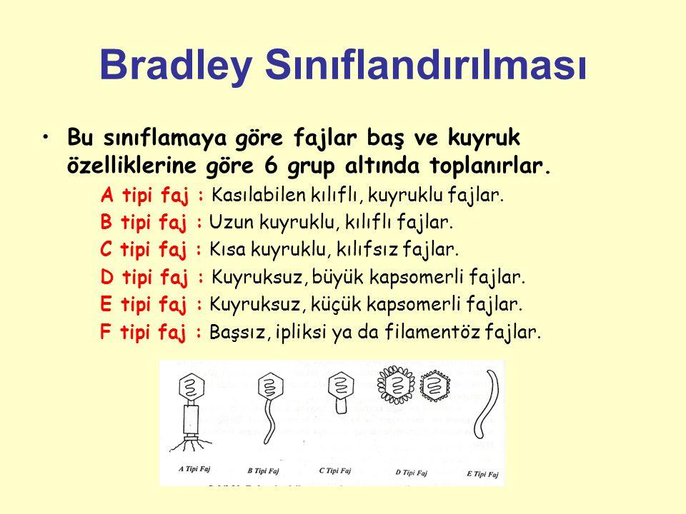Bradley Sınıflandırılması