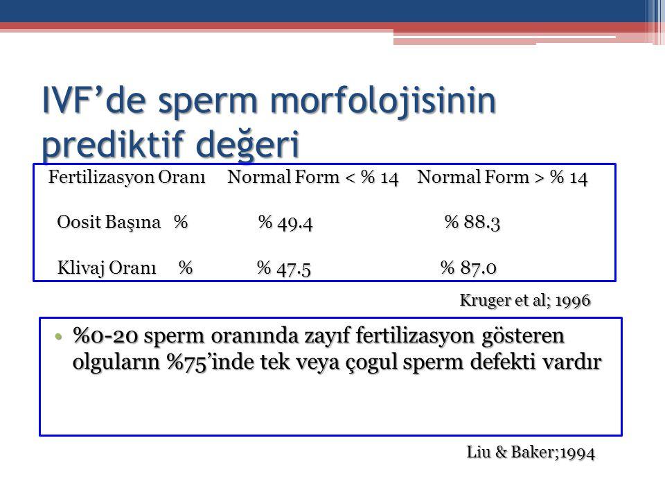 IVF'de sperm morfolojisinin prediktif değeri