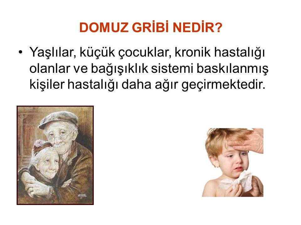 DOMUZ GRİBİ NEDİR.