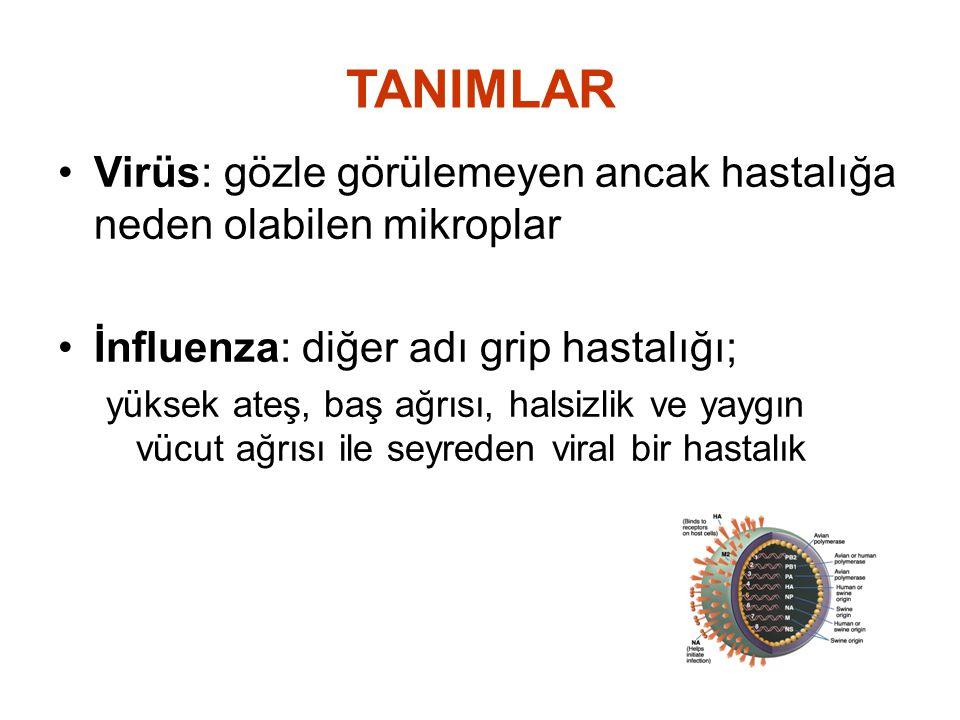 TANIMLAR Virüs: gözle görülemeyen ancak hastalığa neden olabilen mikroplar. İnfluenza: diğer adı grip hastalığı;