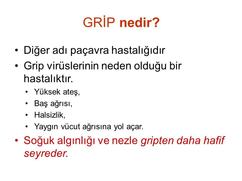 GRİP nedir Diğer adı paçavra hastalığıdır