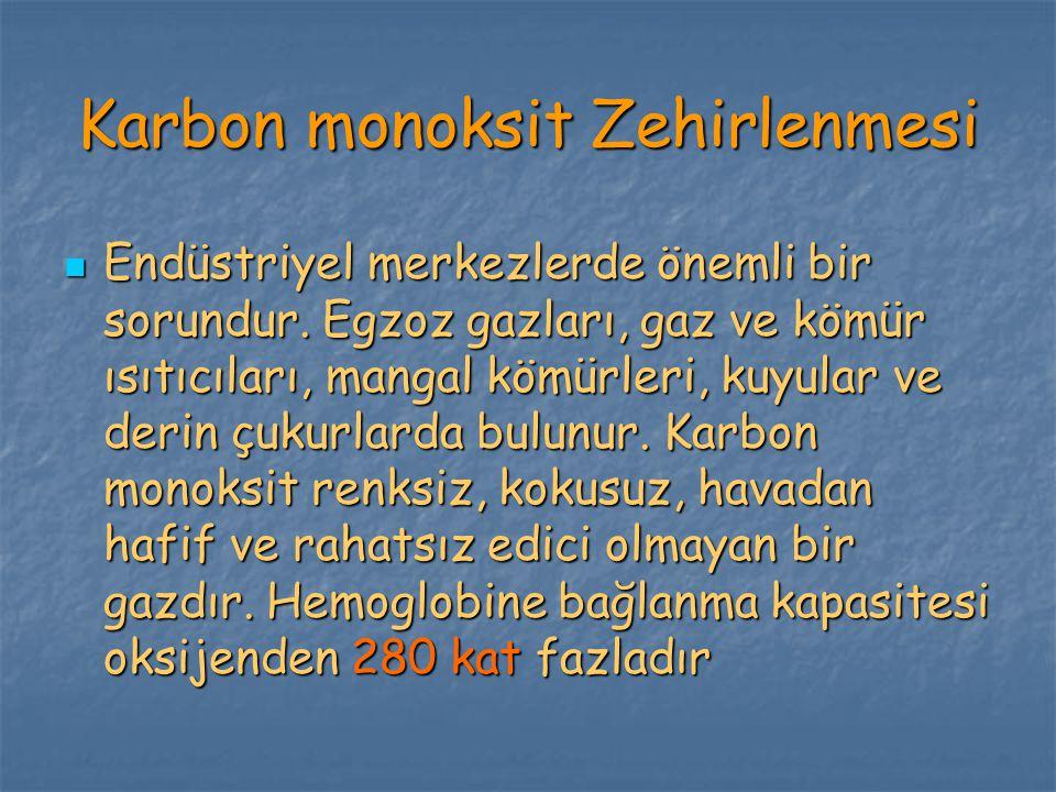 Karbon monoksit Zehirlenmesi