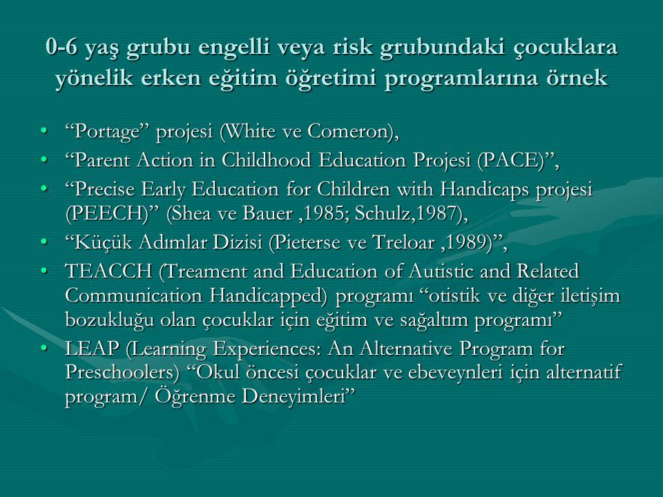 0-6 yaş grubu engelli veya risk grubundaki çocuklara yönelik erken eğitim öğretimi programlarına örnek