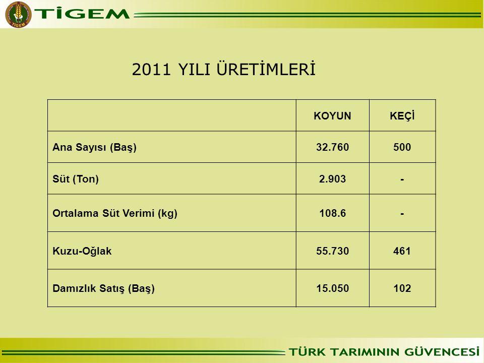 2011 YILI ÜRETİMLERİ KOYUN KEÇİ Ana Sayısı (Baş) 32.760 500 Süt (Ton)