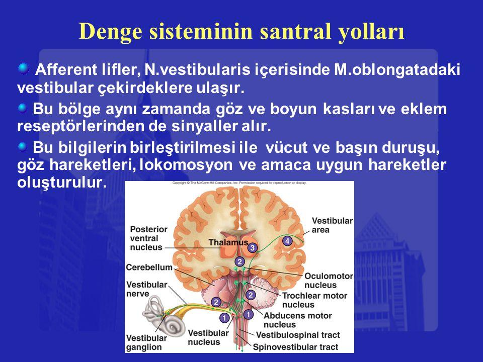 Denge sisteminin santral yolları