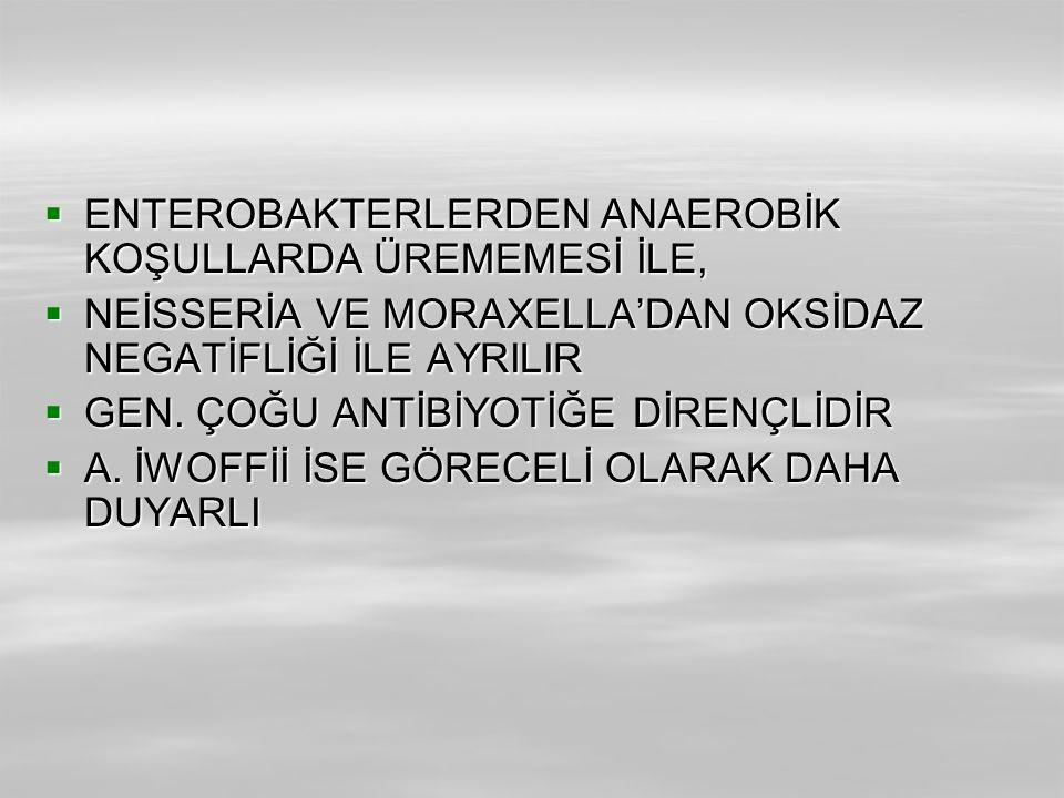 ENTEROBAKTERLERDEN ANAEROBİK KOŞULLARDA ÜREMEMESİ İLE,