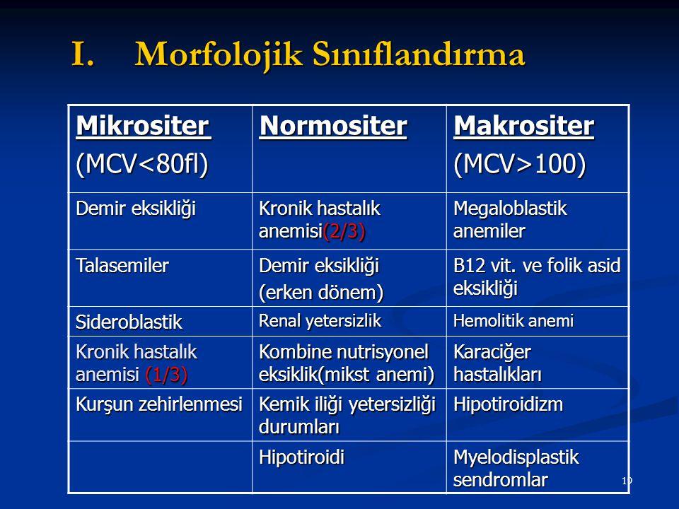 Morfolojik Sınıflandırma