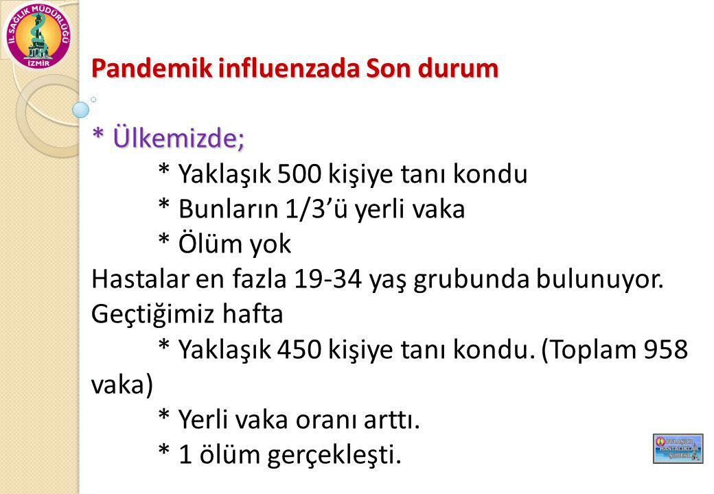 Pandemik influenzada Son durum