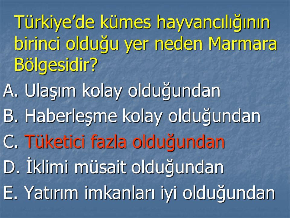 Türkiye'de kümes hayvancılığının birinci olduğu yer neden Marmara Bölgesidir