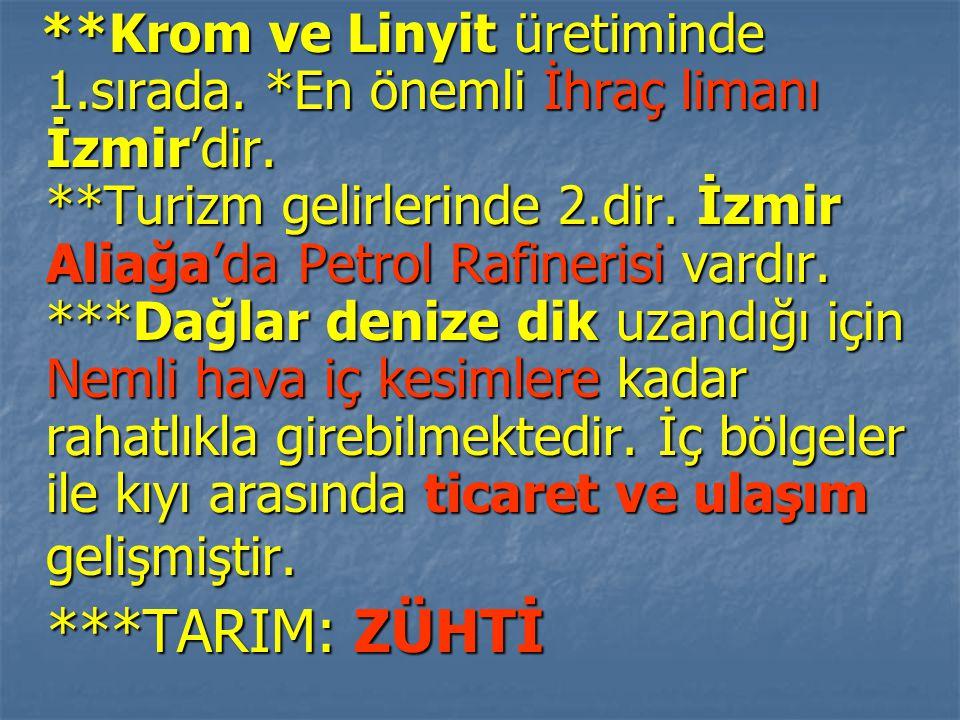 Krom ve Linyit üretiminde 1. sırada. En önemli İhraç limanı İzmir'dir