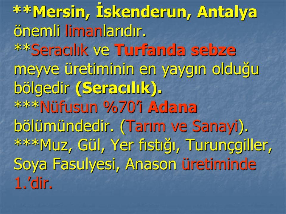 Mersin, İskenderun, Antalya önemli limanlarıdır