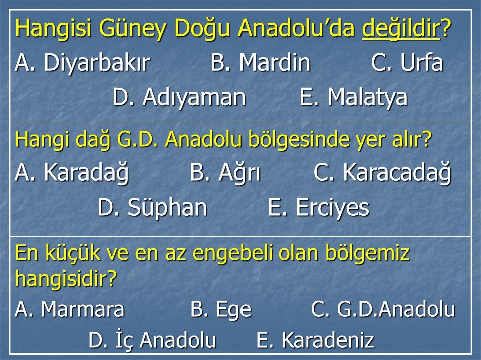 Hangisi Güney Doğu Anadolu'da değildir