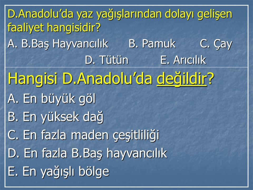 Hangisi D.Anadolu'da değildir