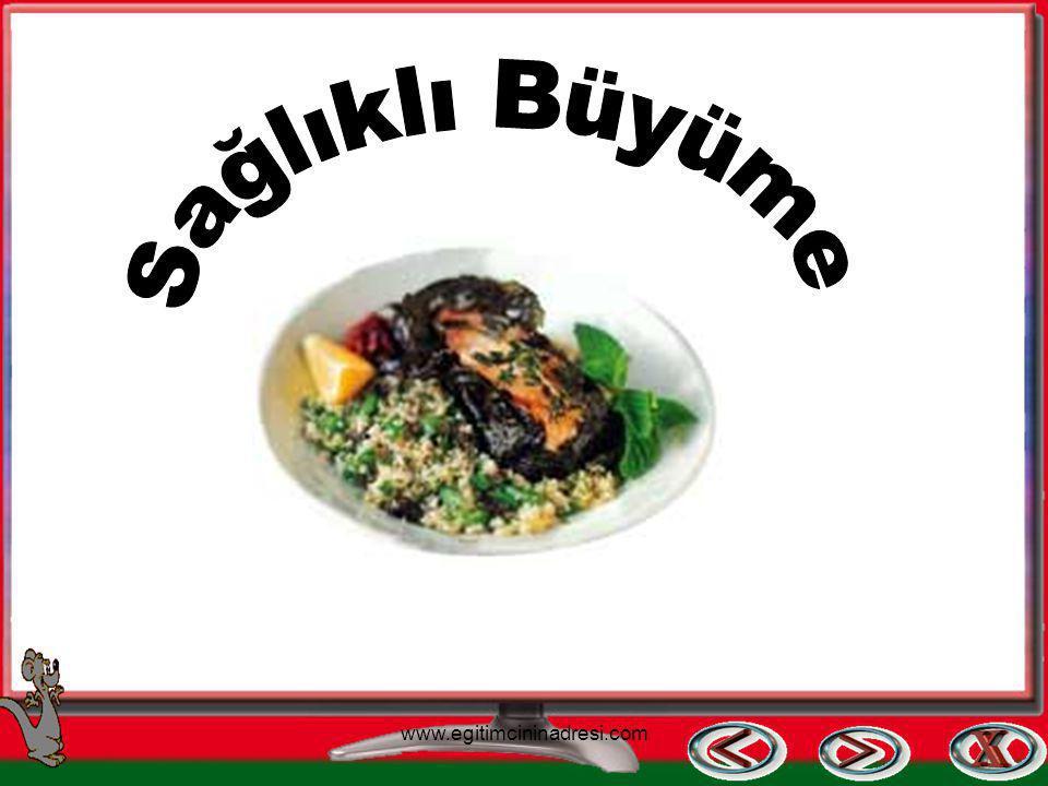 Sağlıklı Büyüme www.egitimcininadresi.com