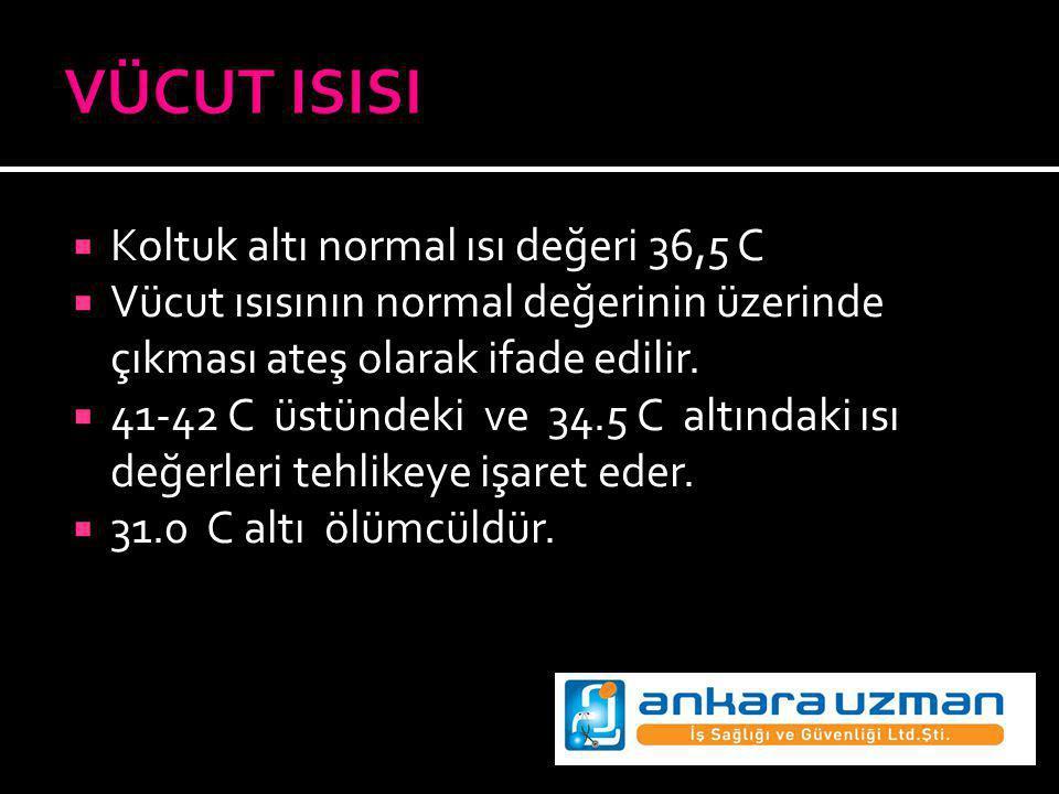 VÜCUT ISISI Koltuk altı normal ısı değeri 36,5 C