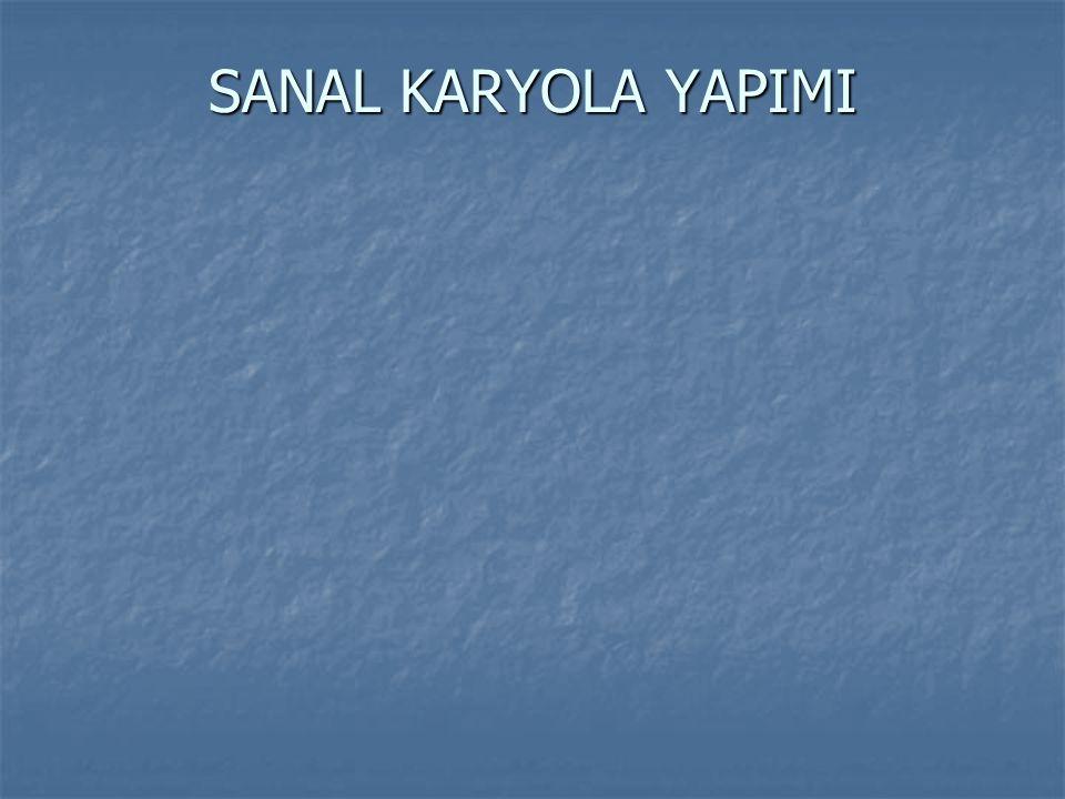 SANAL KARYOLA YAPIMI
