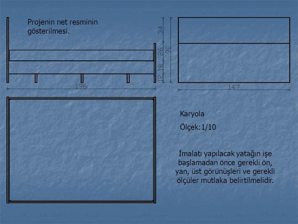 Projenin net resminin gösterilmesi.