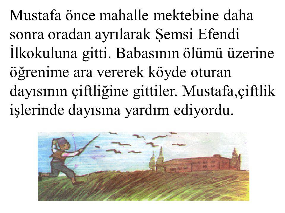 Mustafa önce mahalle mektebine daha sonra oradan ayrılarak Şemsi Efendi İlkokuluna gitti.