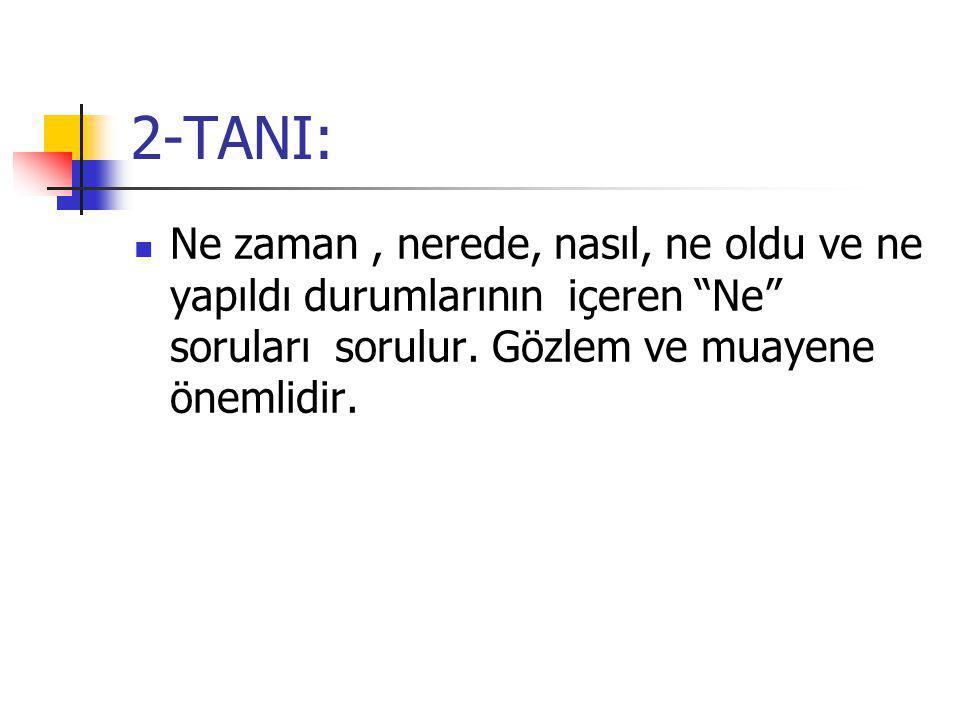2-TANI: Ne zaman , nerede, nasıl, ne oldu ve ne yapıldı durumlarının içeren Ne soruları sorulur.