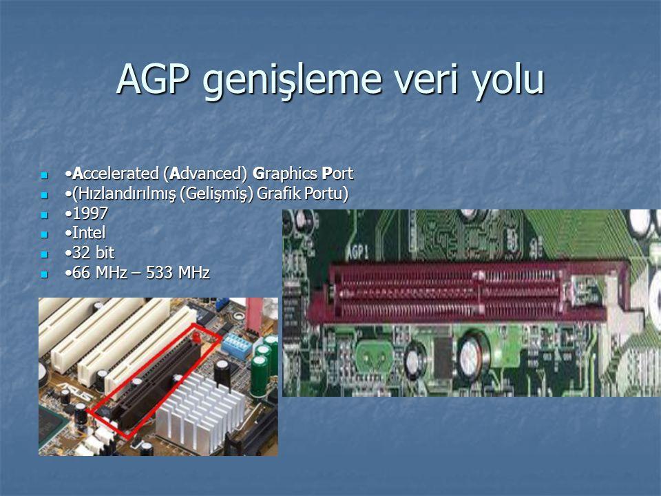 AGP genişleme veri yolu
