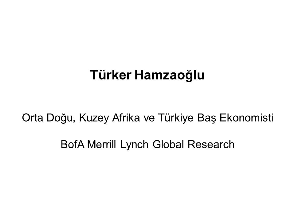 Türker Hamzaoğlu Orta Doğu, Kuzey Afrika ve Türkiye Baş Ekonomisti