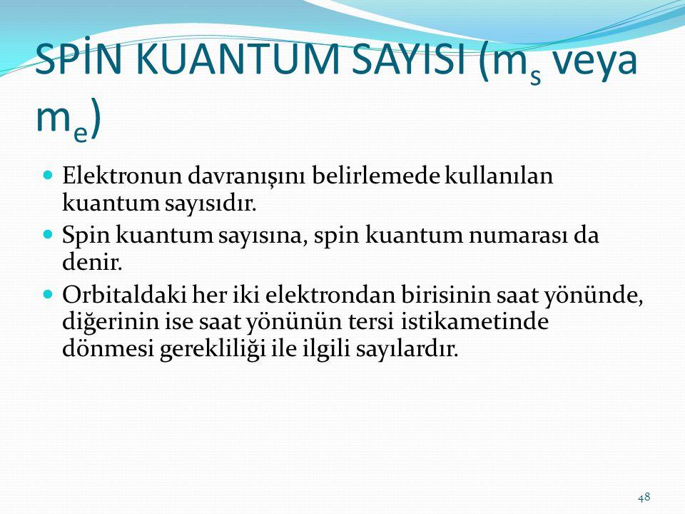 SPİN KUANTUM SAYISI (ms veya me)