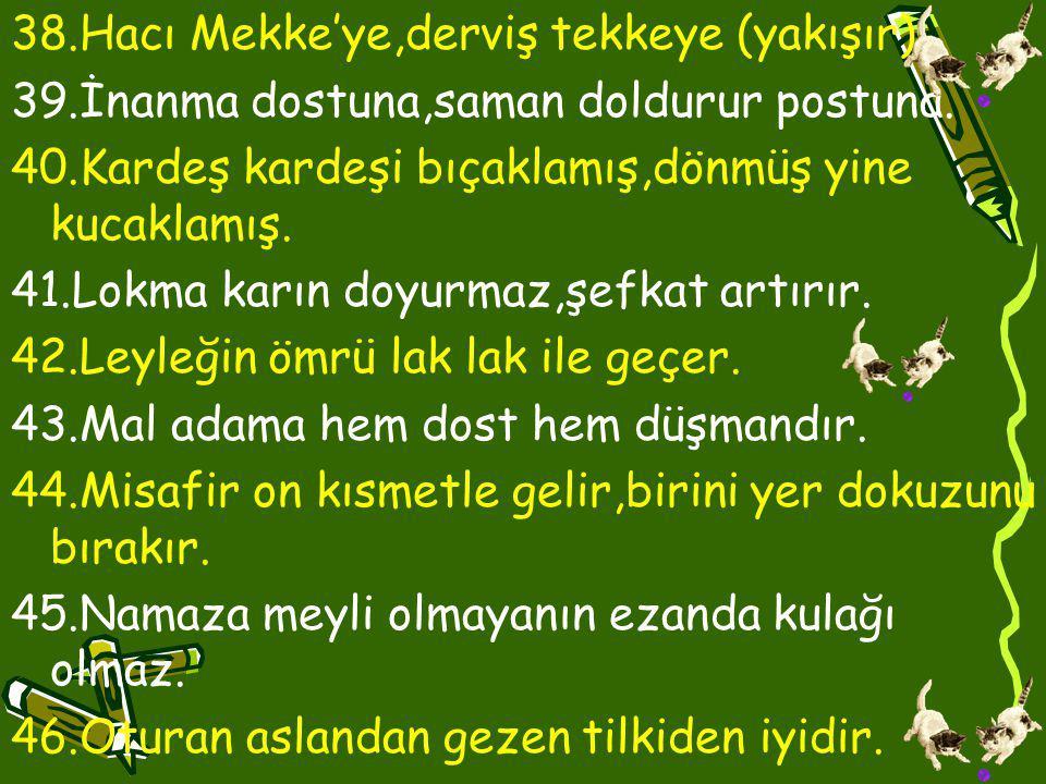 38.Hacı Mekke'ye,derviş tekkeye (yakışır).