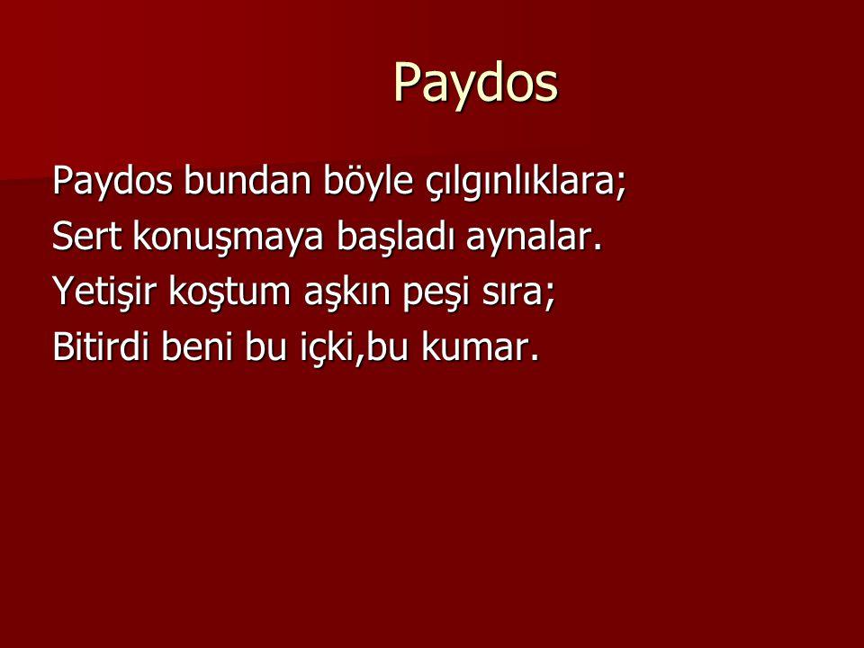 Paydos Paydos bundan böyle çılgınlıklara;