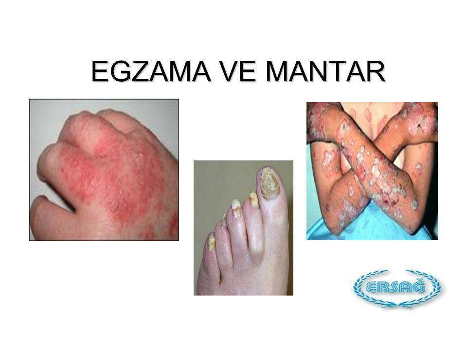 EGZAMA VE MANTAR