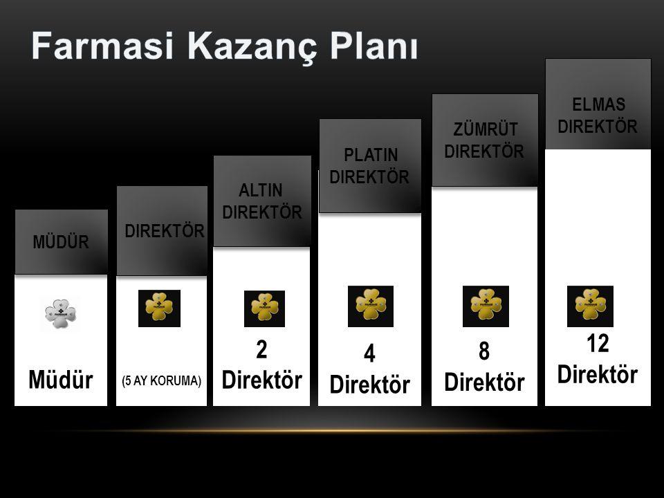 Farmasi Kazanç Planı 12 8 4 Direktör Direktör Direktör 2 Direktör