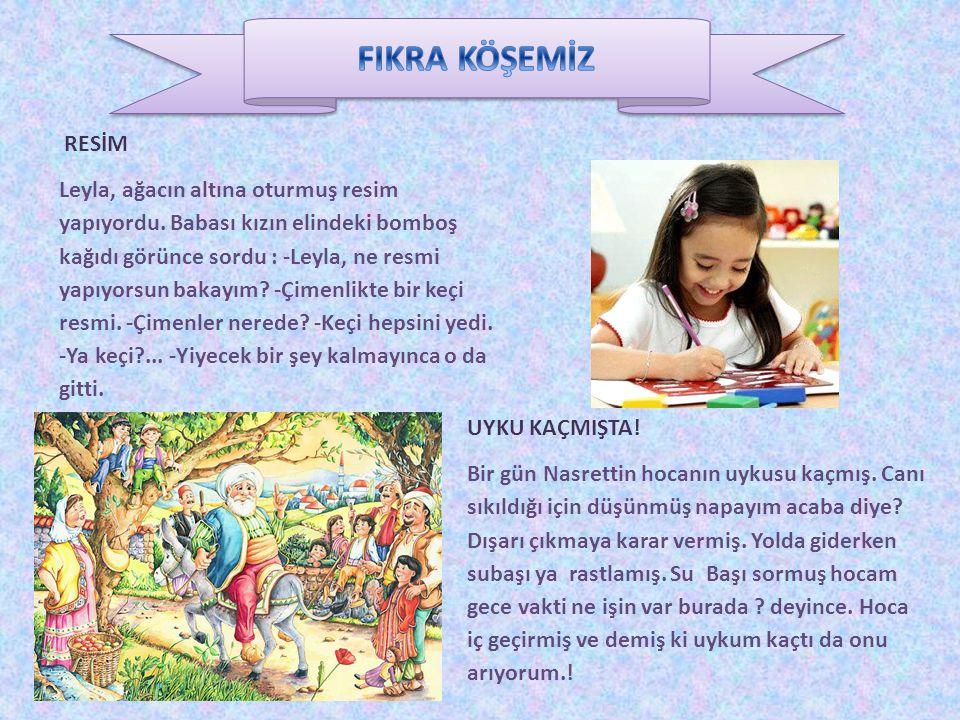 FIKRA KÖŞEMİZ RESİM.