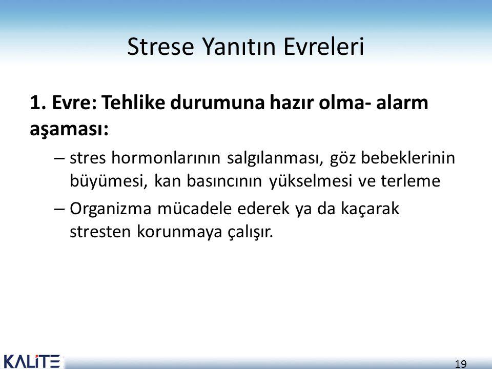 Strese Yanıtın Evreleri