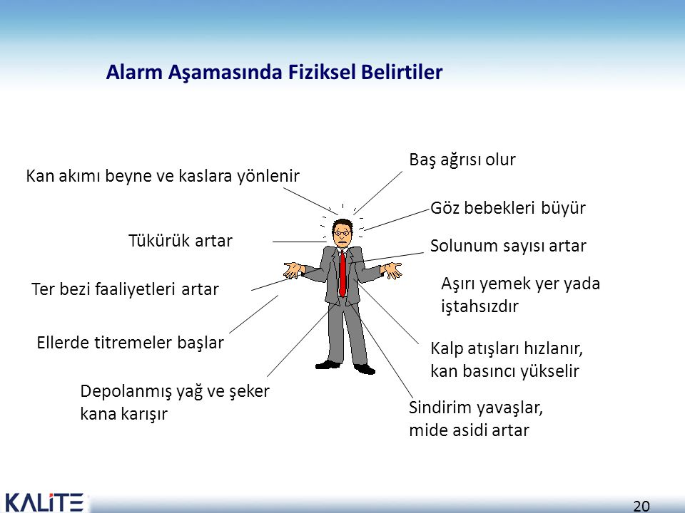 Alarm Aşamasında Fiziksel Belirtiler