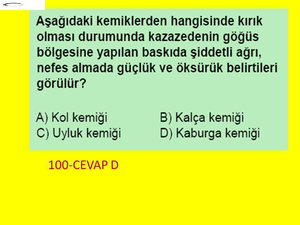 100-CEVAP D