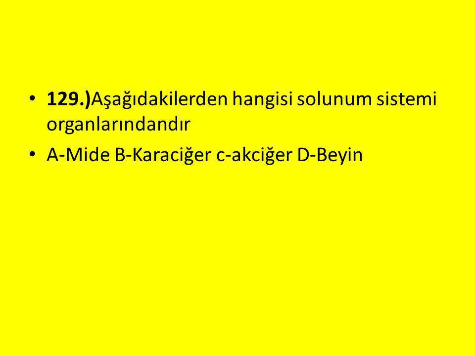 129.)Aşağıdakilerden hangisi solunum sistemi organlarındandır