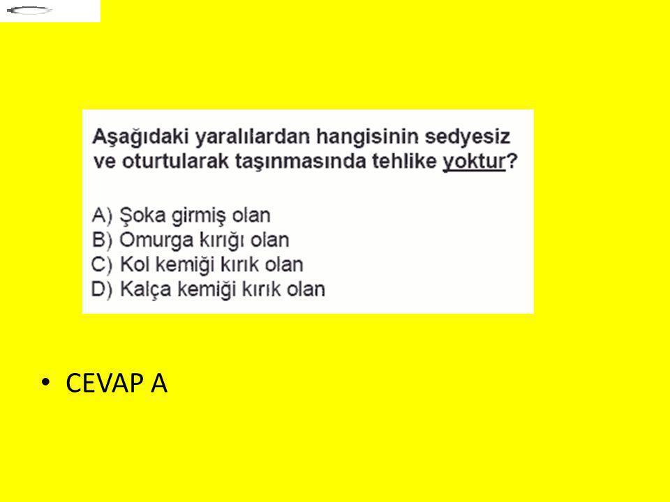 CEVAP A