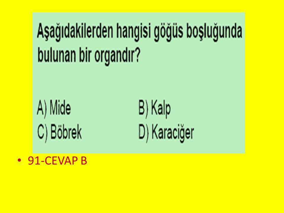 Soru 2.. 91-CEVAP B