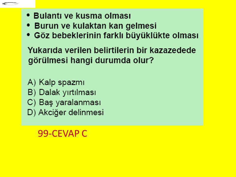 99-CEVAP C