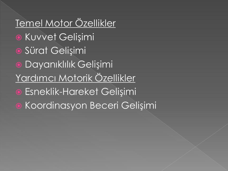 Temel Motor Özellikler
