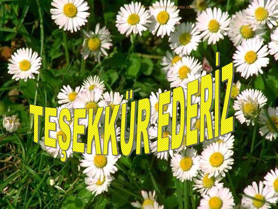 www.egitimcininadresi.com TEŞEKKÜR EDERİZ
